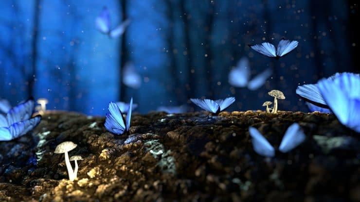 Fantasy Wesen Bild 1