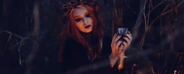 12 Bücher wie Twilight